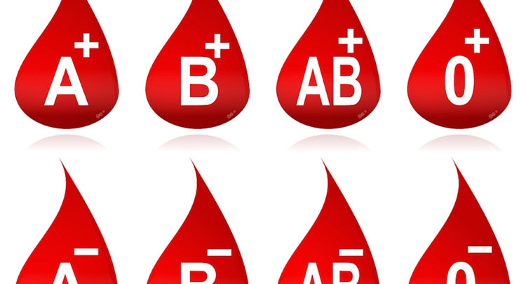 Smoothie Haven Lifestyle Meal Prep Service Blood Type JulieDaniluk com pictures of different blood types